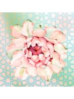 Quadro Decorativo Flor Vitória